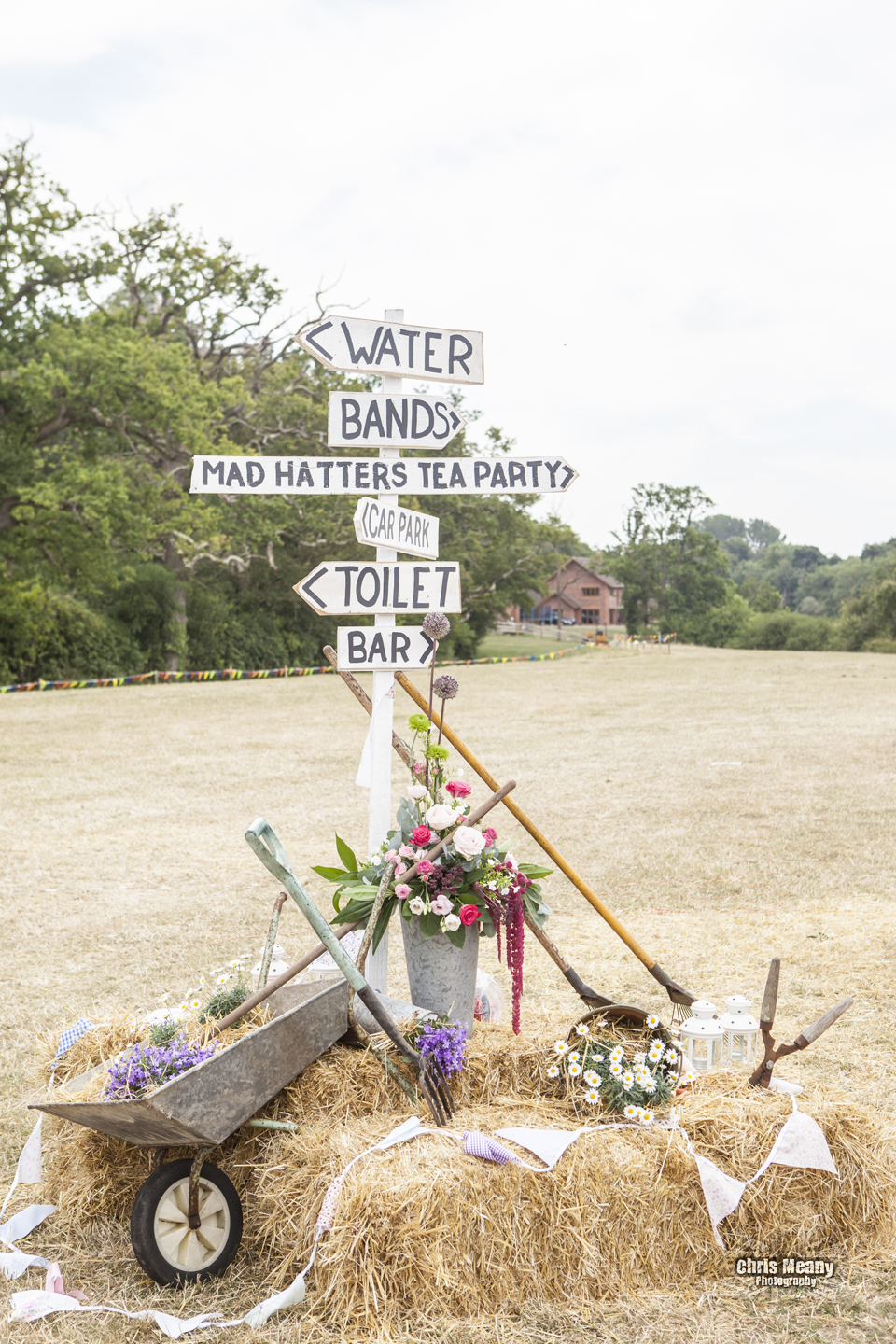 Festival Wedding Signs