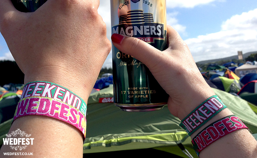 wedfest electric picnic wristbands