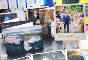wedfest wedding thank you cards
