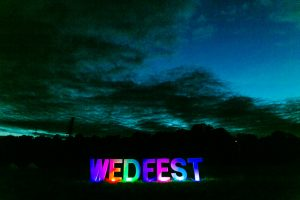 wedfest wedding