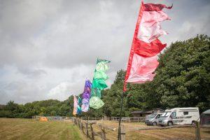 festival wedding flags