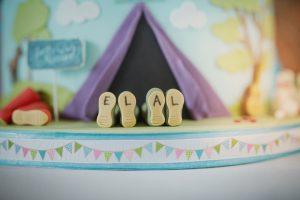 ellen alex festival wedding cake